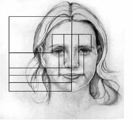 razmjere lica