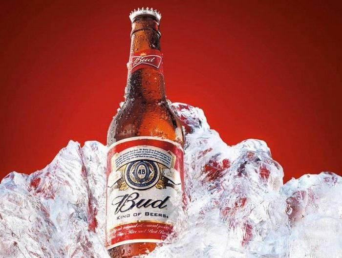 pivo loš recenzije
