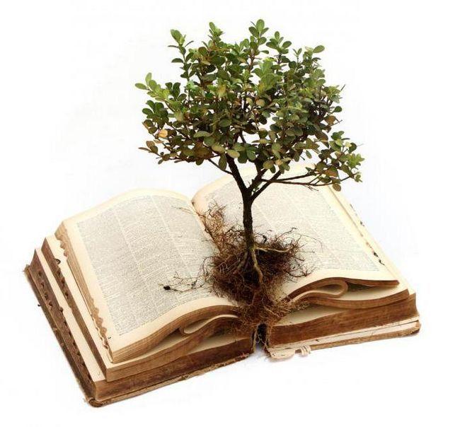 značenje riječi je korijena