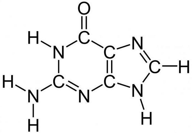 kemijska struktura proteina