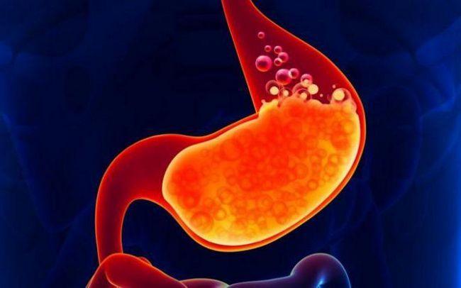 probavu proteina u želucu