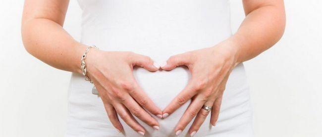Trudnoća blizanaca: značajke, znakovi, razvoj