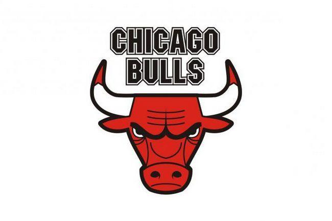 Simbol Chicago Bullsa