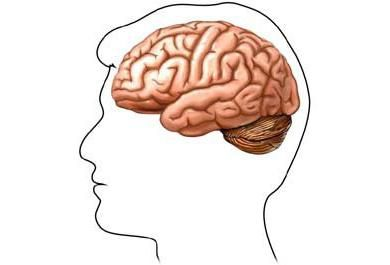dijabetička encefalopatija kod