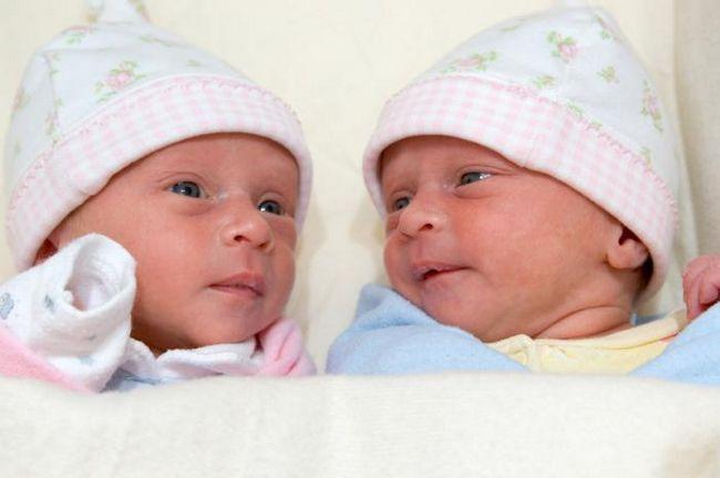 dikornski diaminotski blizanci rada