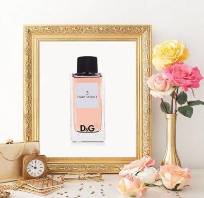parfem empress dolce gabbana recenzije