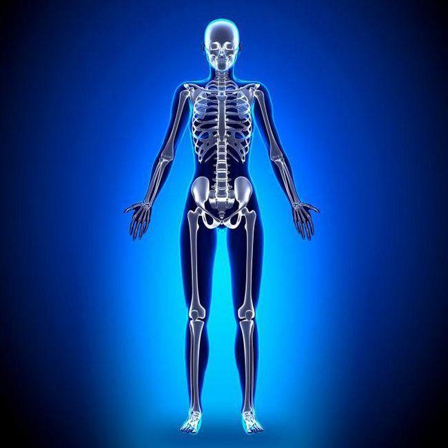 fosfor u funkciji ljudskog tijela