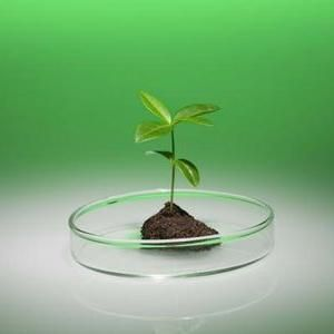 primjena fosforne kiseline