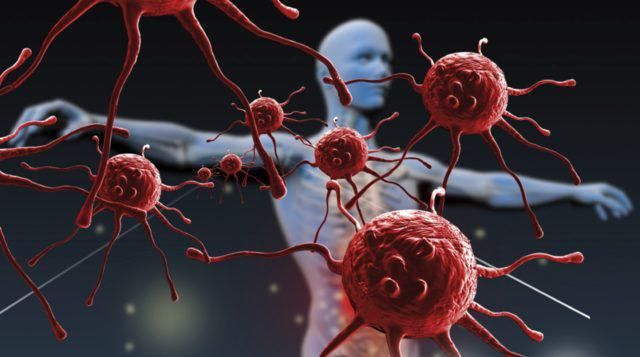 antitijela na ljudski gama interferon