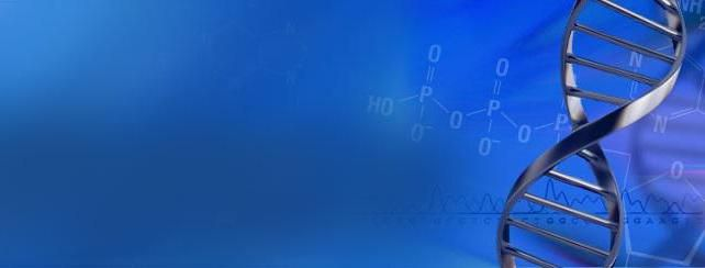 karakteristična za RNA