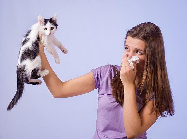 kapi za oči od alergija za opis djece