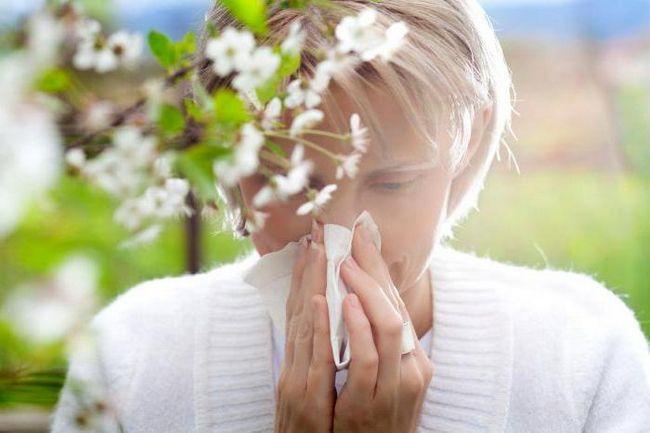 popis kapi za oči od cijena alergije i pregleda