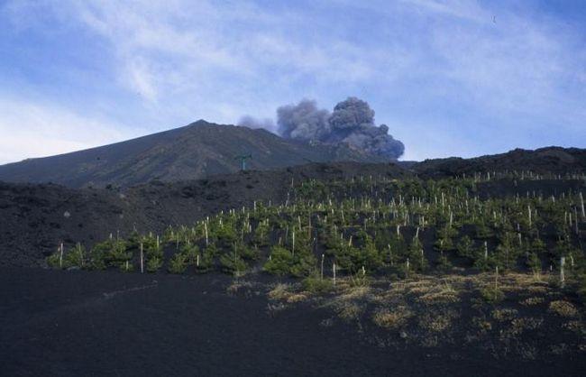 posljedice vulkanskih erupcija