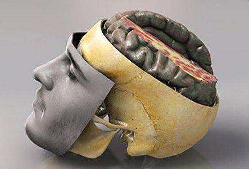 encefalopatija, nespecificirana