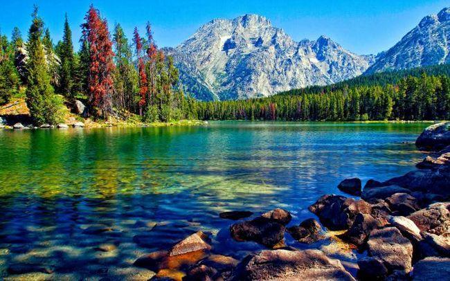 К чему снится озеро? К чему снится купаться в озере?