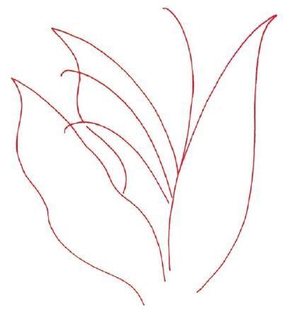 Kako crtati ljiljan doline?