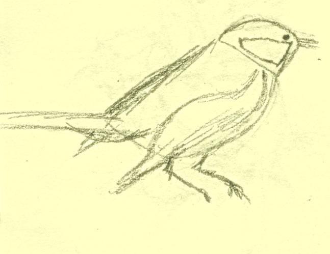 privući vrabce