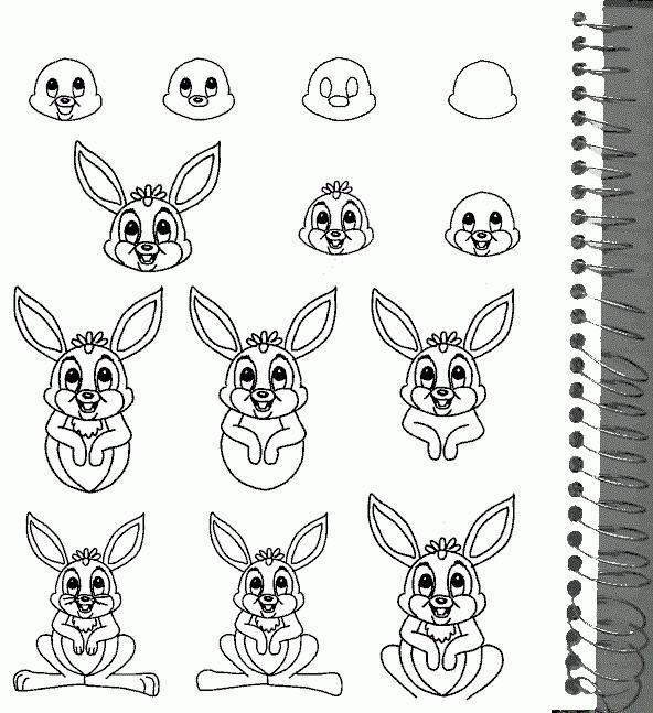 Kako nacrtati zec koristeći olovku