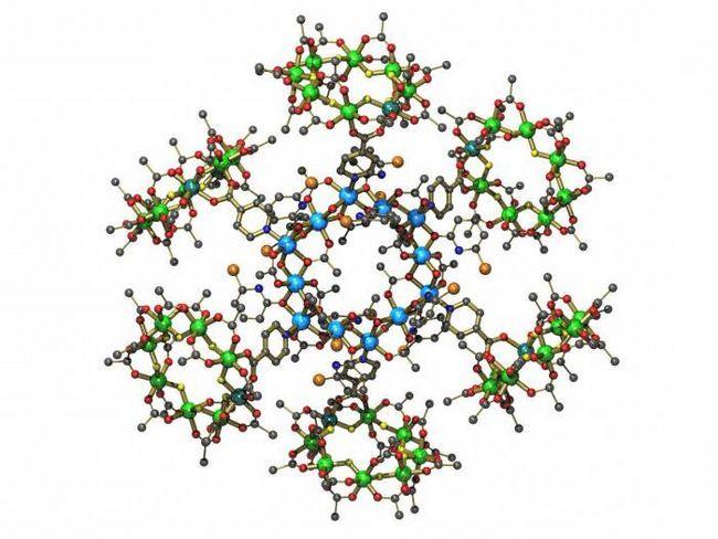 ферменты как биологические катализаторы