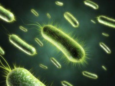 kako razlikovati virusnu infekciju od bakterija krvnim testom