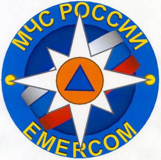 Vrijednost emblema MES
