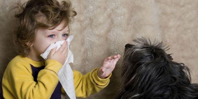 Alergija u dojenčadi