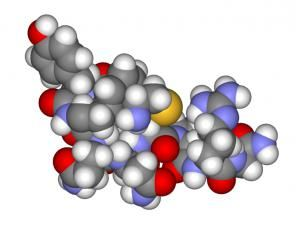биологические функции белков