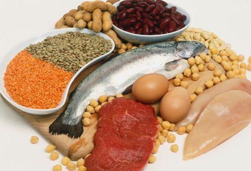 основные функции белка