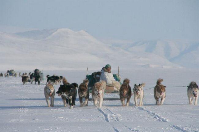 Коренные народы Арктики. Какой народ является коренным народом Арктики?