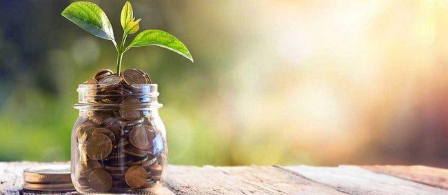 Osobni financijski plan: značajke kompilacije, preporuke i primjer
