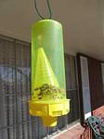 Zamka za pčele. Informacije za početnike pčelara