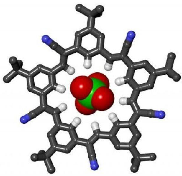 biološke makromolekule