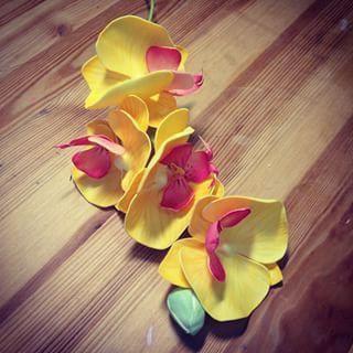 Мастер-класс: орхидея из фоамирана своими руками