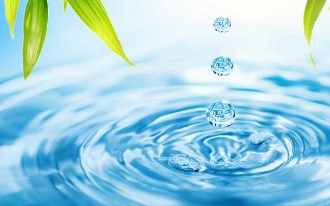 минеральные вещества клетки и их значение