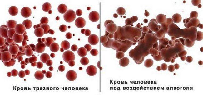 priprema za isporuku krvi