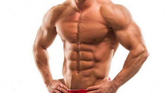 ime mišića osobe