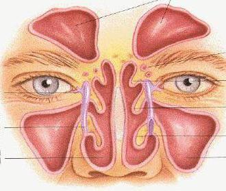 liječenje nosa