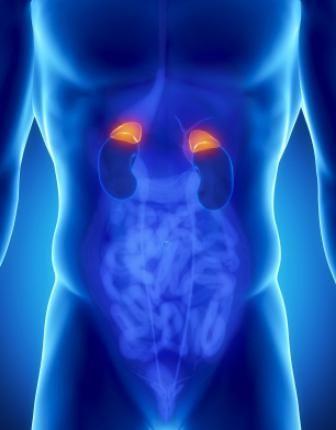 tumor nadbubrežne žlijezde