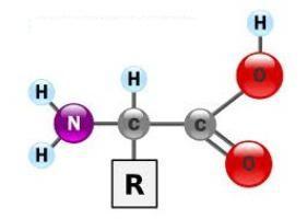 oksidacija organskih tvari