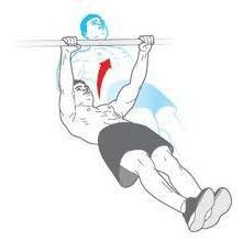 što mišići ljuljaju pri povlačenju