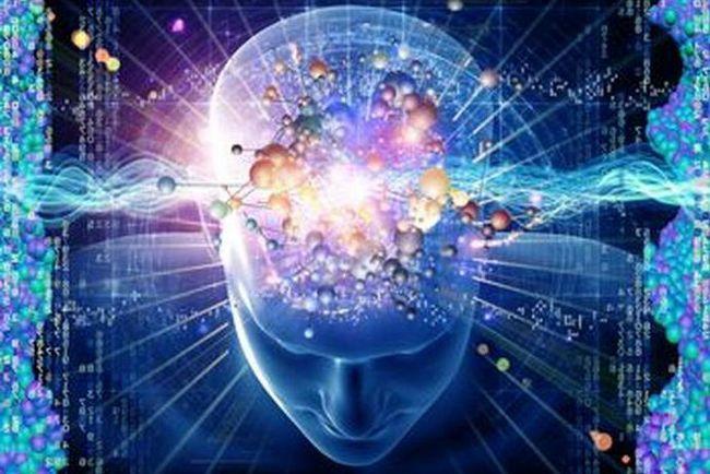 Психофизиологические основы деятельности водителя. Основы психофизиологии труда водителя