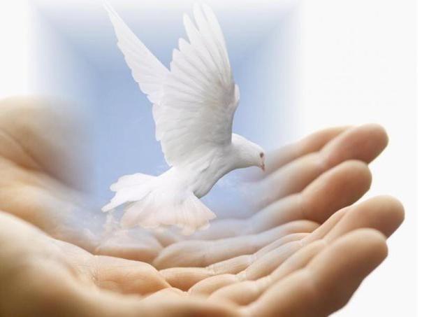 leksičko značenje riječi ljubaznost