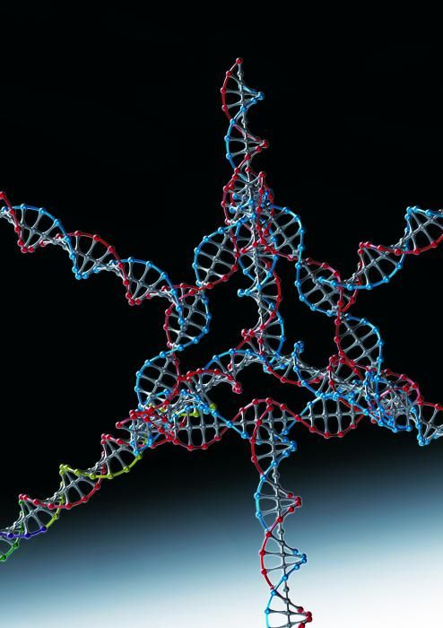 RNA stanice