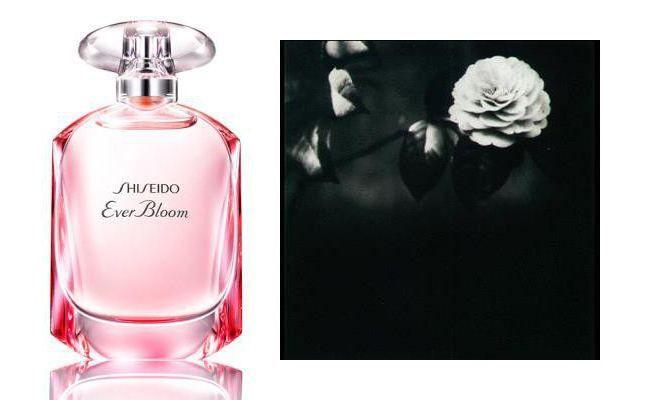 duhovi shiseido esaver cvatu recenzije