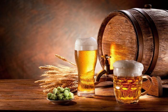 koliko stupnjeva u pivu