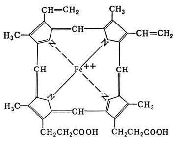 kompleksnog proteina