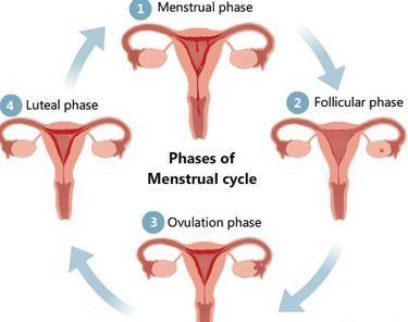 osjetljive bradavice trudnoće