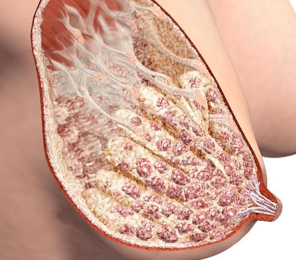 svrbež i uklanjanje bradavica kod žena tijekom trudnoće