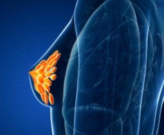 bradavice povrijeđene tijekom trudnoće