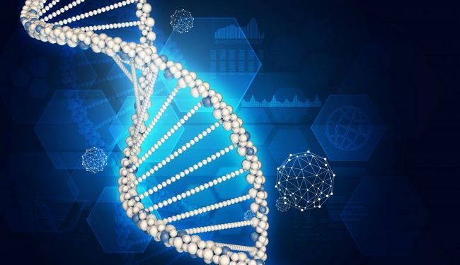 usporedba strukture tablica DNA i RNA